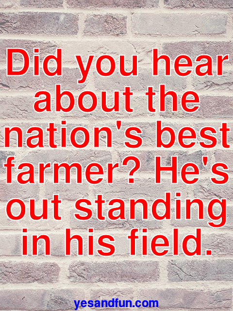 Did you hear about the nations best farmer? Hes out standing in his field.