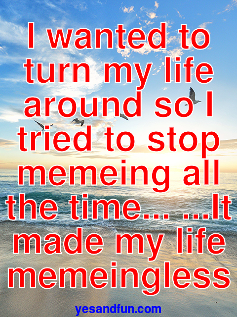 I wanted to turn my life around so I tried to stop memeing all the time... ...It made my life memeingless