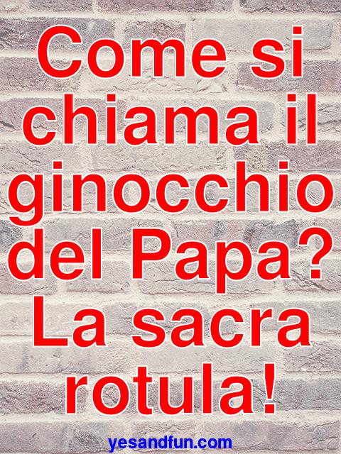 Come si chiama il ginocchio del Papa? La sacra rotula!