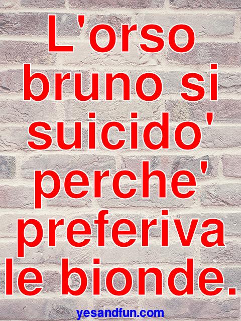 Lorso bruno si suicido perche preferiva le bionde.